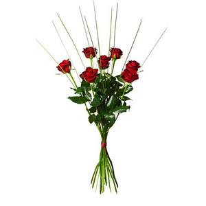 7 röda rosor
