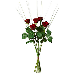 5 stora rosor