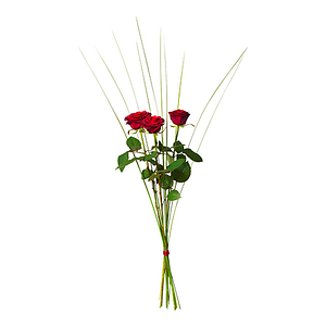 3 stora rosor